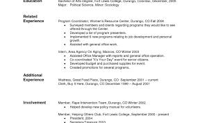 Nice Resume Fill Out Form Contemporary Resume Ideas Namanasa Com