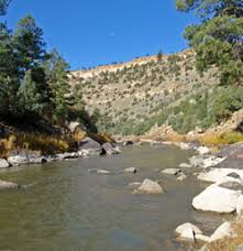 New Mexicos Best Fly Fishing Rivers And Streams
