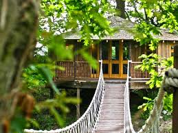 31 Awesome Tree Houses  Win Gallery  EBaumu0027s WorldThe Canopy Treehouses