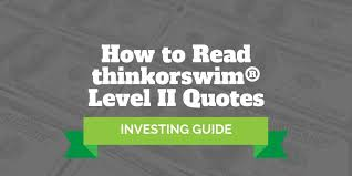 Quotes Chart Trade History Settings App How To Read Thinkorswim Level 2 Quotes Investormint
