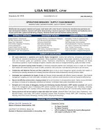 Resume Profile Examples New Professional Of Profiles For Resumes Mis