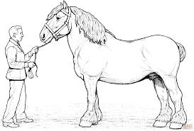 Small Picture Printable 30 Free Printable Realistic Horse Coloring Pages 3812