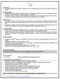 over  cv and resume samples   free download  accountant resume