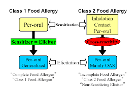 Latex-Fruit Syndrome and Class 2 Food Allergy