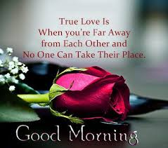 Good Morning My Love Quotes Interesting Inspirational Love Quotes Good Morning True Love Is When You're Far
