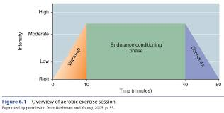 aerobic workout components