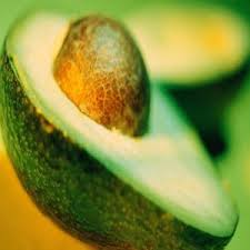 carrier oils australia. avocado australia carrier oils