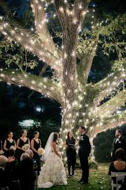 diy lighting for wedding. Best Outdoor Tree Lighting Ideas Including Outside Lights Wedding Decorations Pictures Diy For .