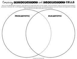 Compare Prokaryotic And Eukaryotic Cells Venn Diagram Prokaryotic And Eukaryotic Cells Venn Diagram Activity
