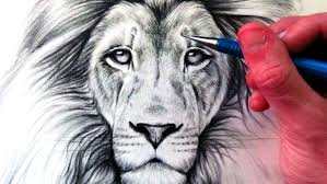 realistic lion face drawing. Fine Drawing How To Draw A Lion And Realistic Face Drawing U