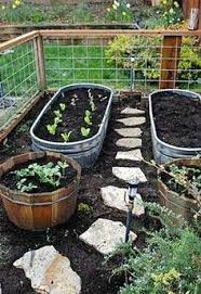 Small Picture Backyard Vegetable Garden Designs Solidaria Garden