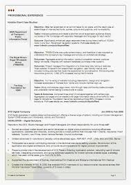 24 Professional Summary Resume Examples For Software Developer Free