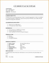 7 Professional Curriculum Vitae Format Sample Besttemplates