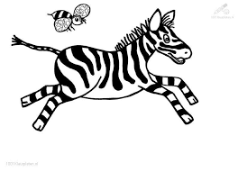 Small Picture Colouring Pages Zebra Crossing 200 best coloring pages images on