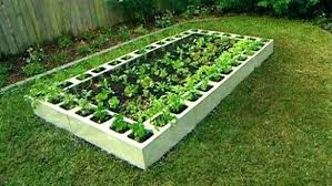 raised beds concrete blocks concrete block garden cinder block raised garden bed raised garden bed garden