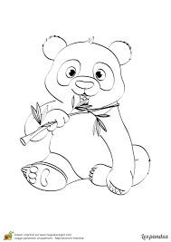 Dessin Imprimer Et Colorier D Un Panda Avec Un Bambou