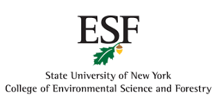 essay on nature environment new york essay on air pollution and  essay on nature environment new york
