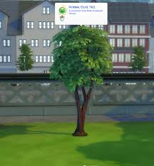 Mod The Sims - Harvestable Olive Tree [Updated 21.09.2020]