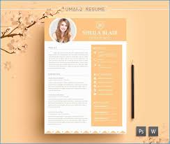 Cover Letter Design Template Free Astonishing Resume Template Free