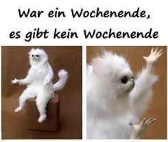 Arbeit Beste Meme Lustige Bilder Humor Lustige Xdpediade 12