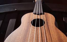 Image result for soprano ukulele vs. concert ukulele strings