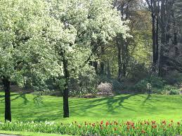 clark botanic garden 193 i u willets rd albertson ny 11507