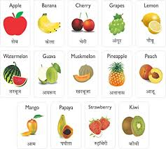 mfm toys fruits and dry fruits bilingual hindi english magnetic flashcards at low s in india amazon in