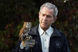 Image result for george bush owl