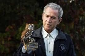 Image result for george bush owl