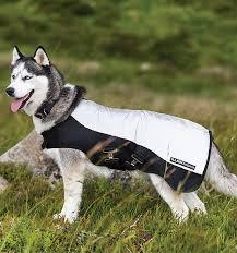 rambo sport series dog rug