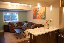 Basement Apartment contemporary-basement