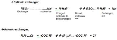 What Is Ion Exchange Chromatography And Its Applications