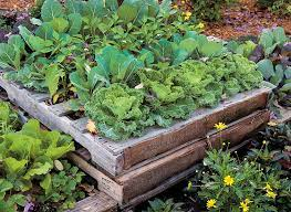 diy pallet raised garden bed garden gate