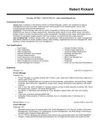 Different Types Of Skills For Resumes Different Types Of Projects In Project Management Pdf Elegant