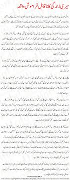 unforgettable incident urdu essay unforgettable incident of my  unforgettable incident urdu essay unforgettable incident of my life
