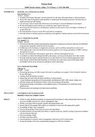 Java Web Developer Resume Sample Java Web Developer Resume Samples Velvet Jobs 8