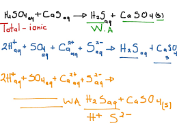sulfuric acid with calcium sulfide net ionic equation science showme