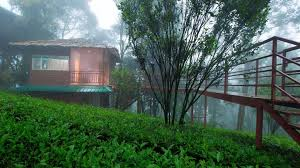 Dream Catcher Kerala Mesmerizing Dream Catcher Plantation Resort Where To Stay Kerala Tourism