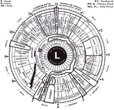 Left Eye Iridology Chart 9