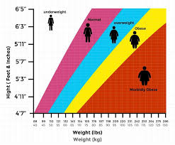 Bmi Chart For 7 Year Old Pin On Health Weight