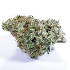 7 points oregon s future 1 broke lab records for thc content but strength s not the only thing that matters