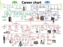 15 Info Flow Chart After 12th Pdf Doc Ppt Download Xls