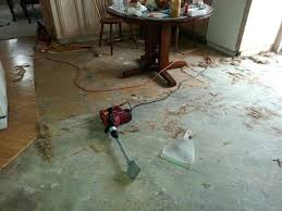 remove glue from wood removing mastic from wood floors innovative on floor with delightful how to