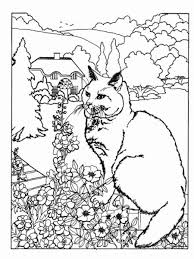 Small Picture Sphynx Breed Cat Online Coloring Page Coloring Coloring Pages