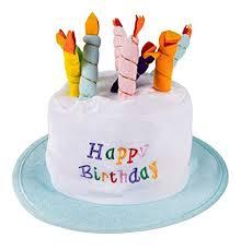 Amazoncom Birthday Cake Plush Party Hats Funny Birthday Top Hat