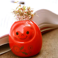 office pot plants. gift diy plant indoor plants office with cute design pot decoration
