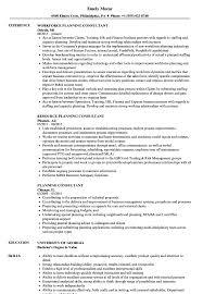 Planning Consultant Resume Samples Velvet Jobs