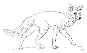 Small Picture Realistic Red Fox Coloring Page Free Printable Coloring Pages