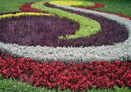 Small Picture Flower Garden Ideas Full Sun Landscape Design