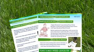 Lawn Guide Archives Tobytobin Com